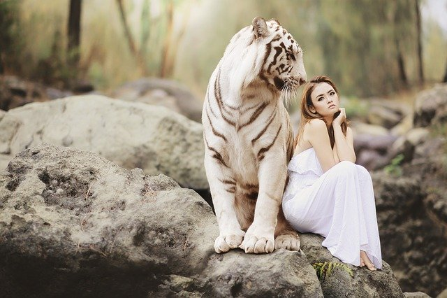Woman sitting with tiger